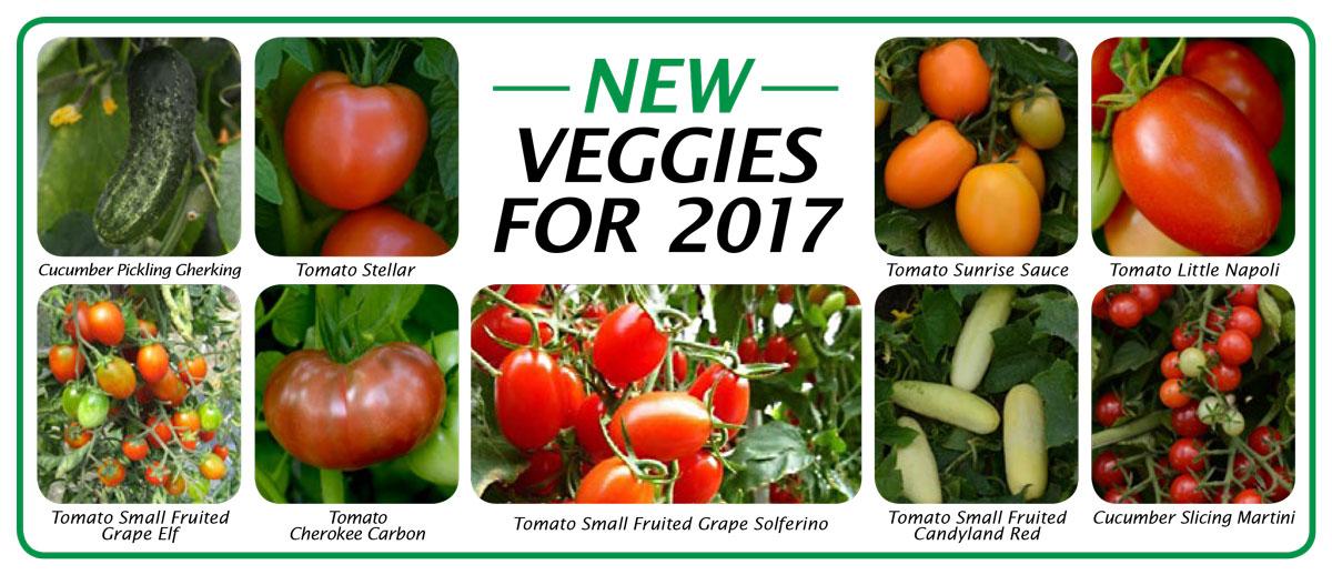 2017 New Veggies