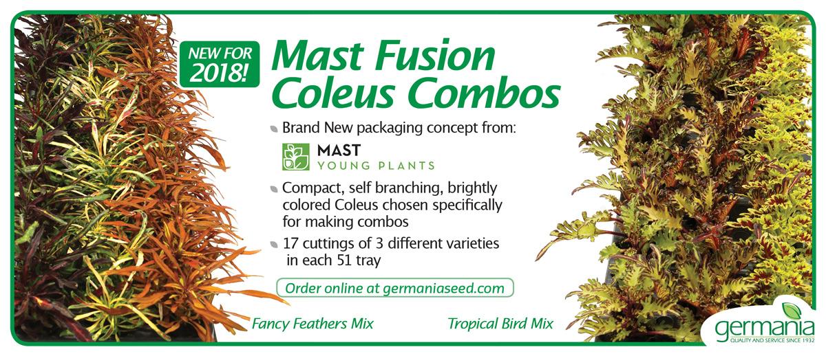 mast-fusion-combos-1200